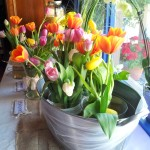 Tulips Easter